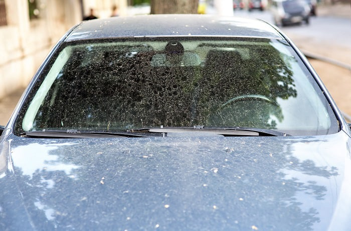 will clr remove hard water stains from auto glass